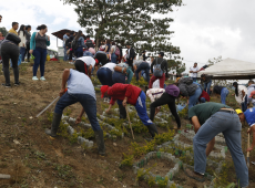 Assim vivem os ex-guerrilheiros das FARC