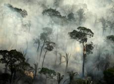 Eurodeputados pedem ação do Congresso brasileiro para proteger a Amazônia