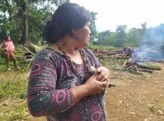 Itaú e dono da Ambev estão entre acionistas que invadem Terra Indígena Jaraguá em SP